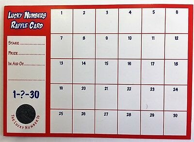 100 Square Raffle Board 5 Bonus Ball Cards Lotto A4 Printed On Card 59