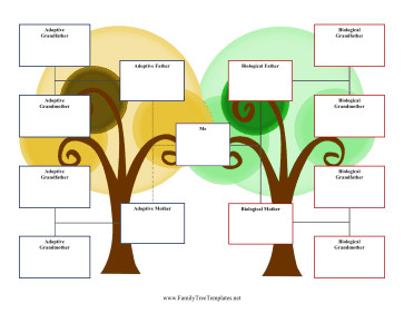 3 Generation Family Tree 3 Generation Adoption Family Tree Template