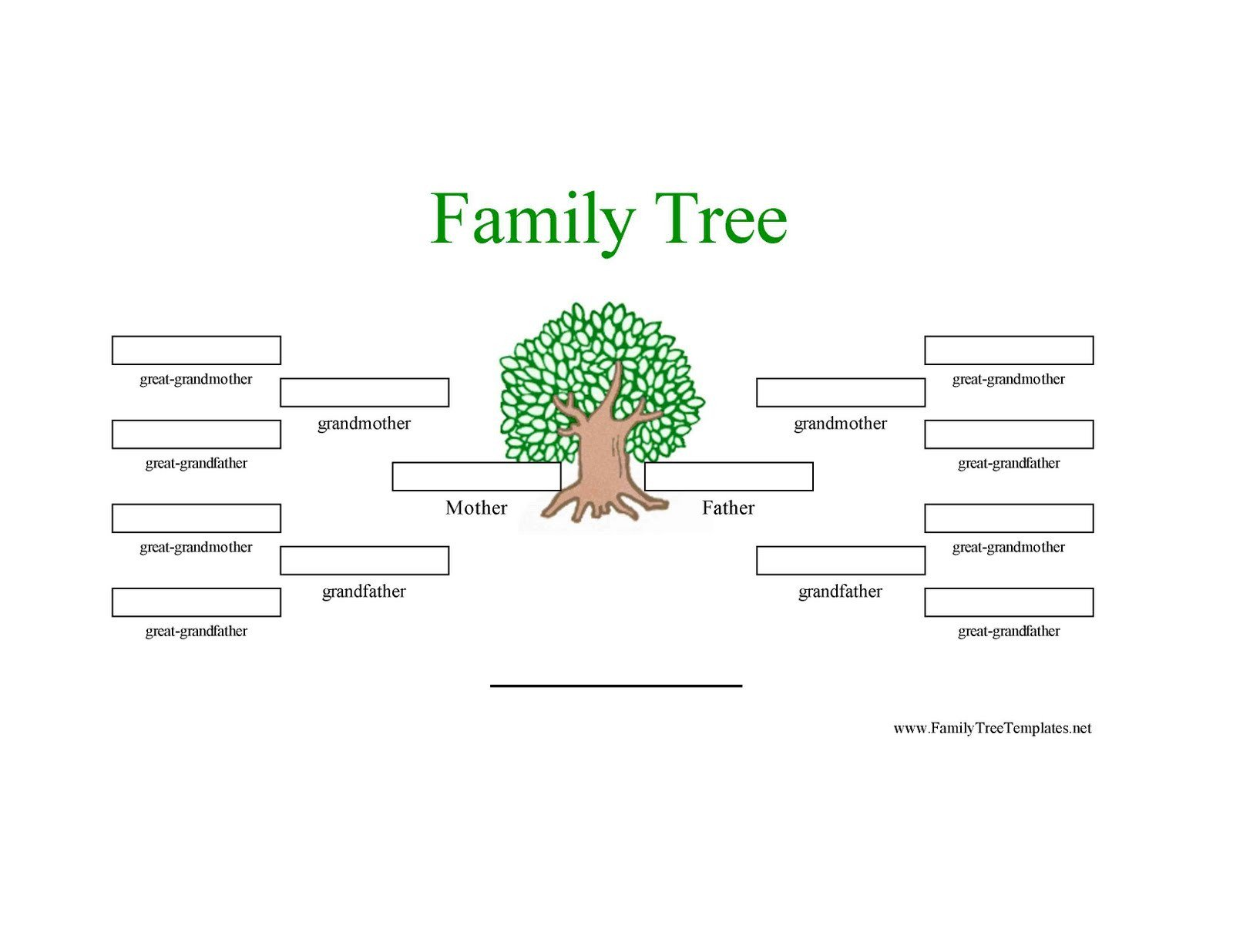 3 Generation Family Tree Family Tree Template Family Tree Template 3 Generations