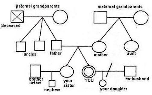 3 Generation Genogram Template 3 Generation Family Genogram