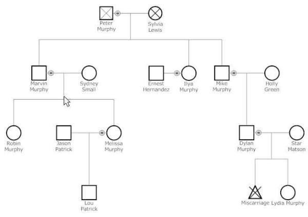 3 Generation Genogram Template 6 Genogram Templates formats Examples In Word Excel