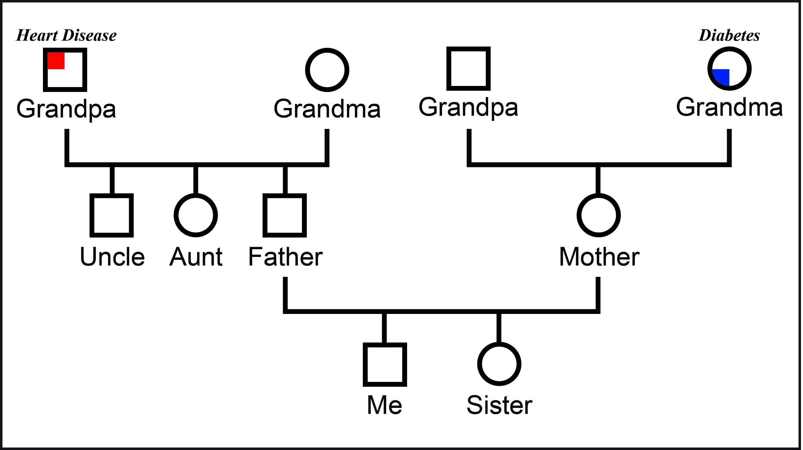 3 Generation Genogram Template Genealogy Workshops