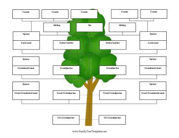 5 Generation Family Tree Reverse Family Tree 5 Generations Template