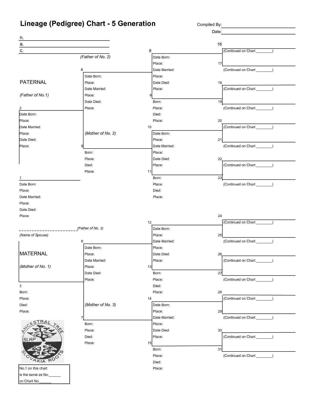 6 Generation Pedigree Chart 12 Best Of Family Tree Pedigree Chart Worksheet 6