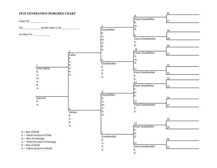 6 Generation Pedigree Chart Blank Family Tree Charts