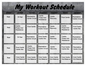 60 Day Workout Plan Insanity Workout Schedule