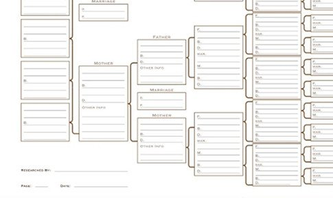 7 Generation Pedigree Chart A3 Blank Family Tree Charts
