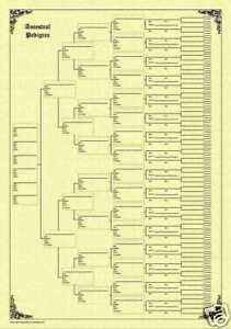 7 Generation Pedigree Chart Family Tree Chart 7 Generation Pedigree Parchment