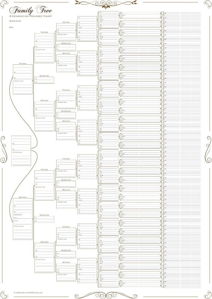 7 Generation Pedigree Chart Family Tree Chart 8 Generation Pedigree Chart Rolled In