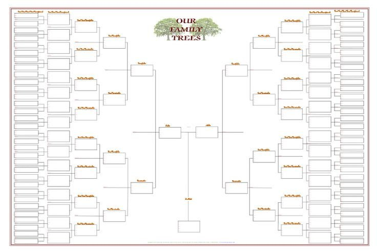 8 Generation Family Tree Template One Branch Family Tree Chart Template