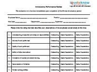 90 Day Performance Review Template Business Printables Index