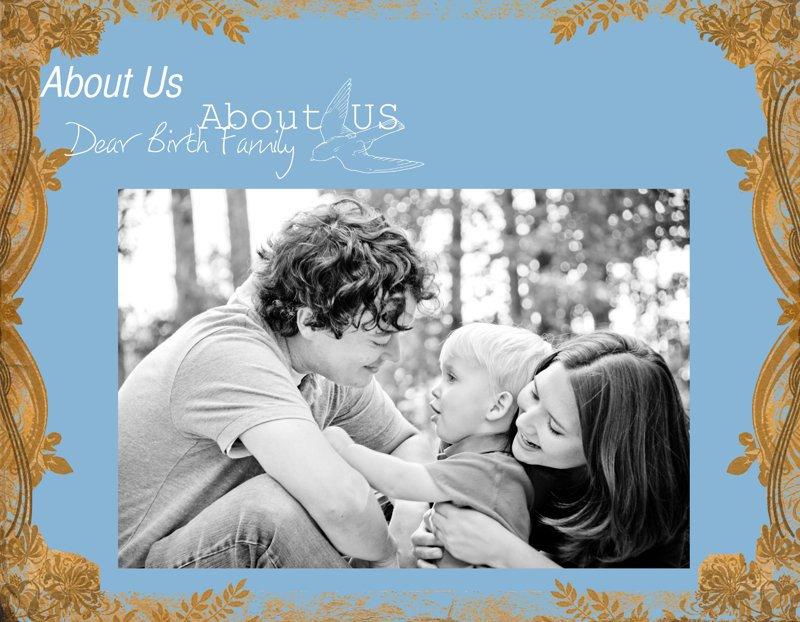Adoption Profile Book Template Book Template Adoption Profile Book Quick Album