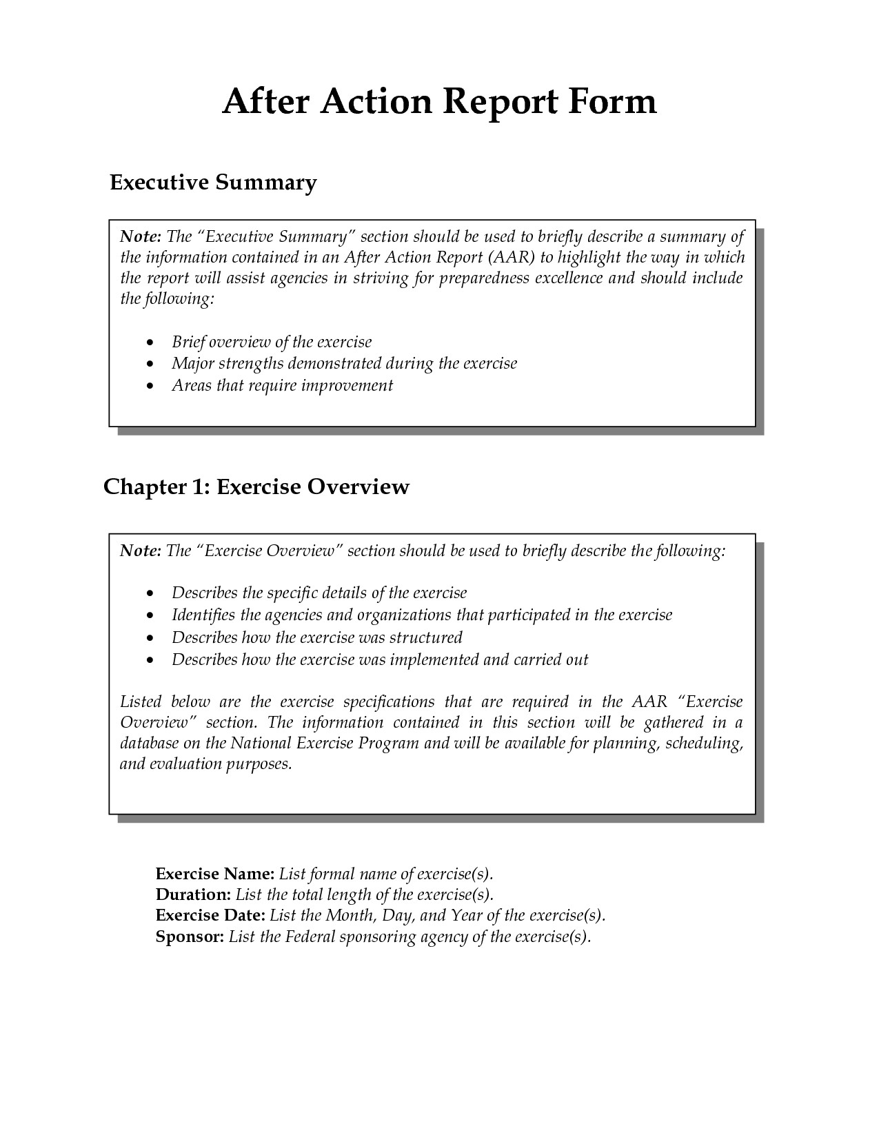 After Action Report Template after Action Report Template
