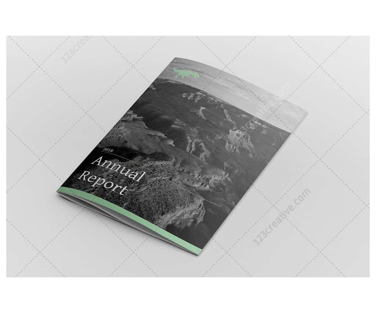 Annual Report Design Templates Annual Report Design Indesign Template Professional