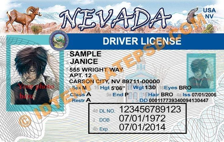 Arizona Id Template 33 Best Driver License Templates Photoshop File Images On
