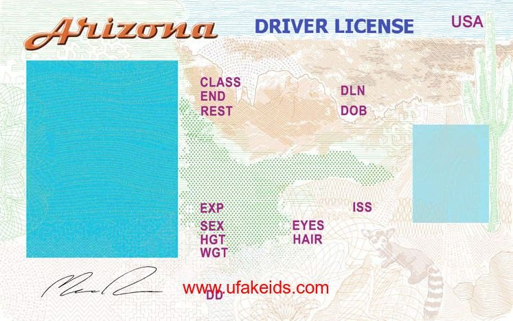 Arizona Id Template Pin by Mike Cimino On Pizza In 2019