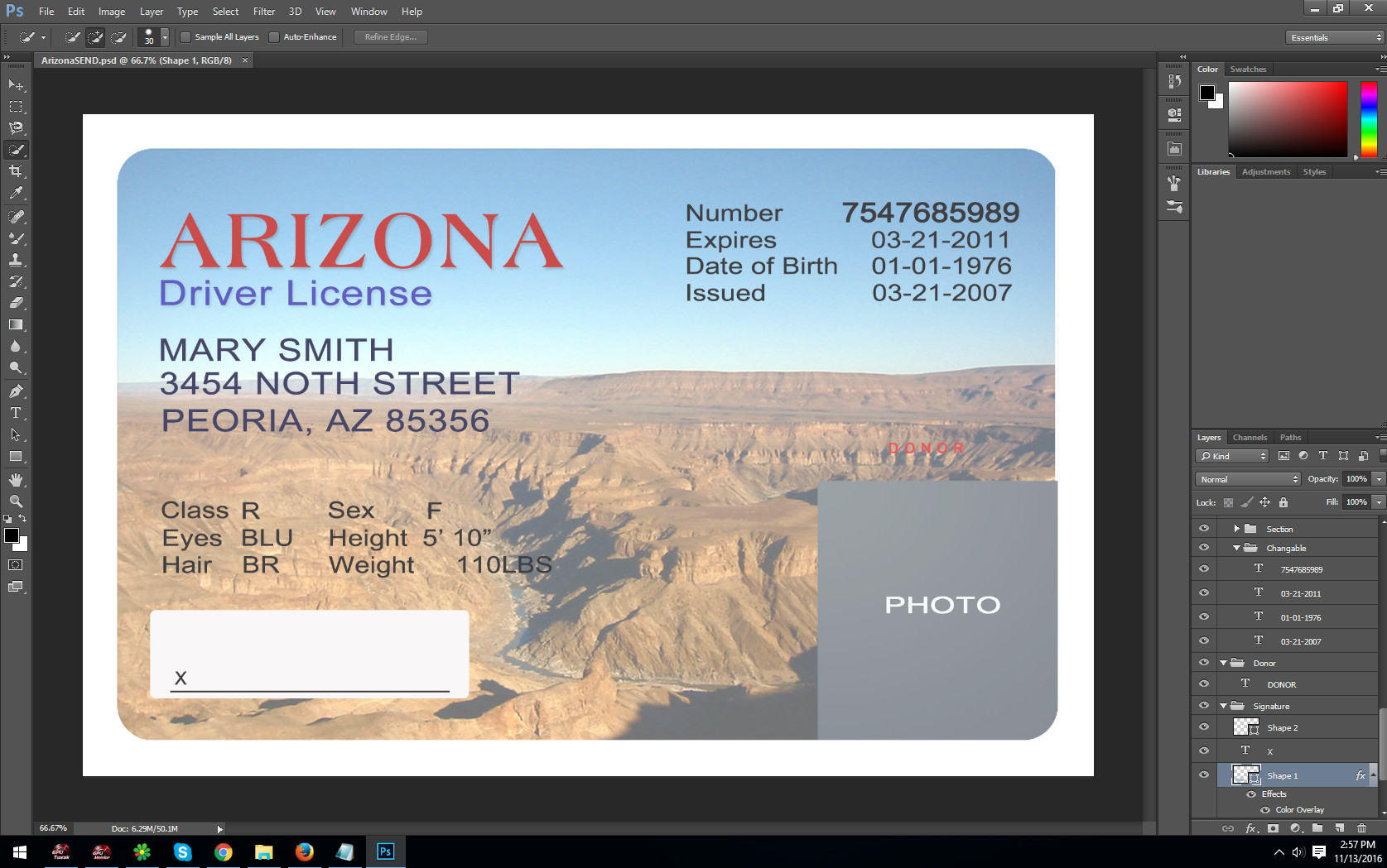 Arizona Id Template Psd Template