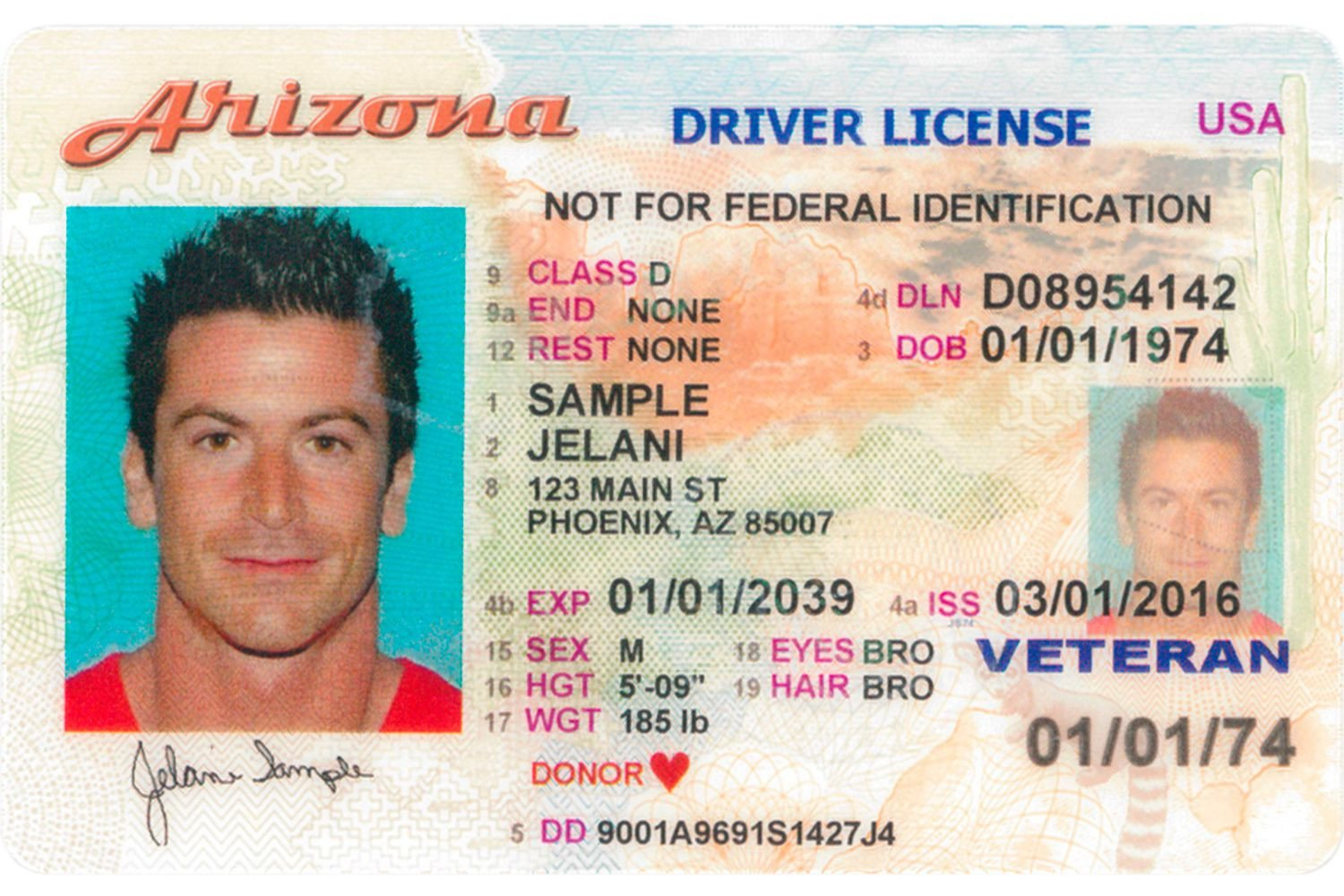 Arizona Id Template What Does An Arizona Driver S License Look Like