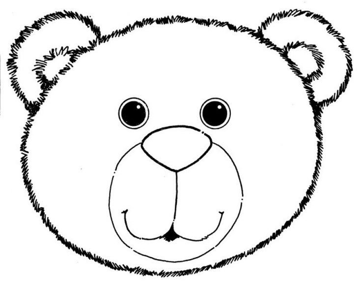 Bear Face Template Best 25 Bear Template Ideas On Pinterest
