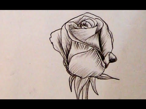 Beautiful Drawings Of Love How to Draw A Beautiful Rose with Charcoal Pencil