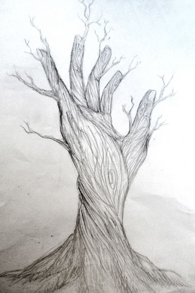 Beautiful Drawings Of Nature Image Result for Nature Drawings Ap Drawing
