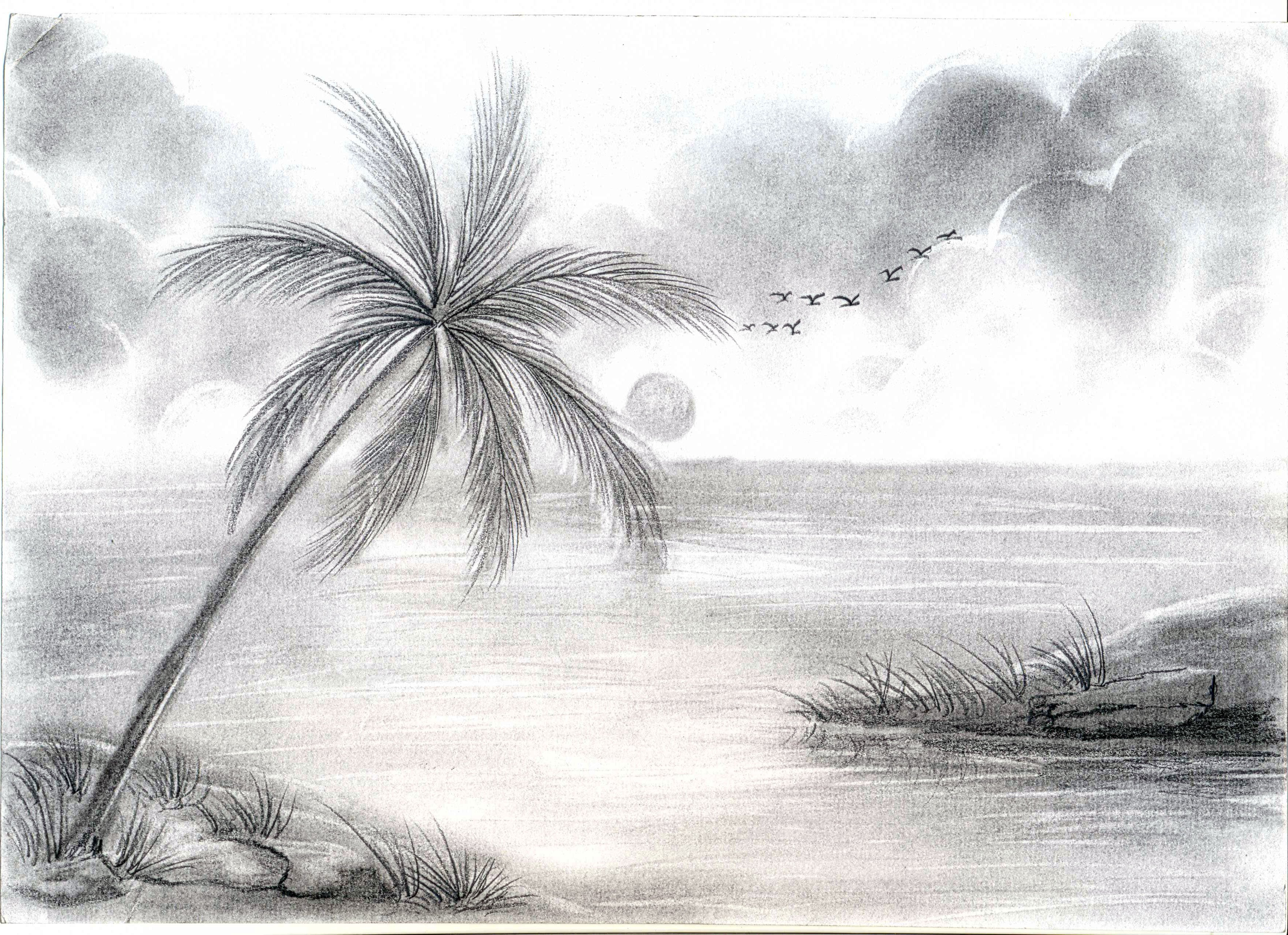 Beautiful Drawings Of Nature Pencil Sketchings Nature Nature Pencil Sketch Drawing