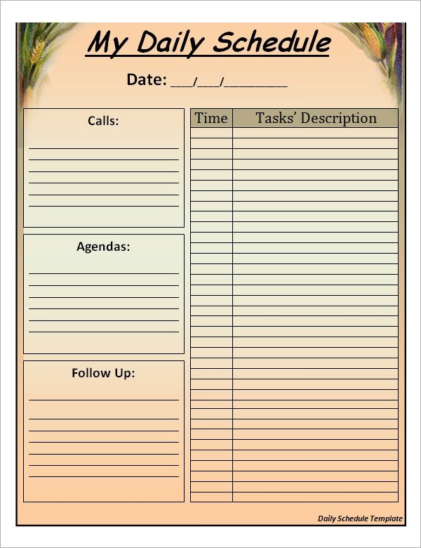 Blank Daily Schedule Template Sample Printable Daily Schedule Template 17 Free