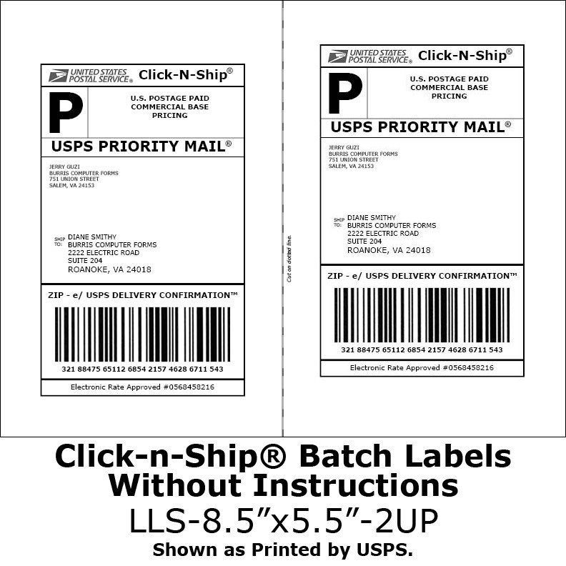 Blank Shipping Label Template Blank Labels for N Ship No More Taping On Postage