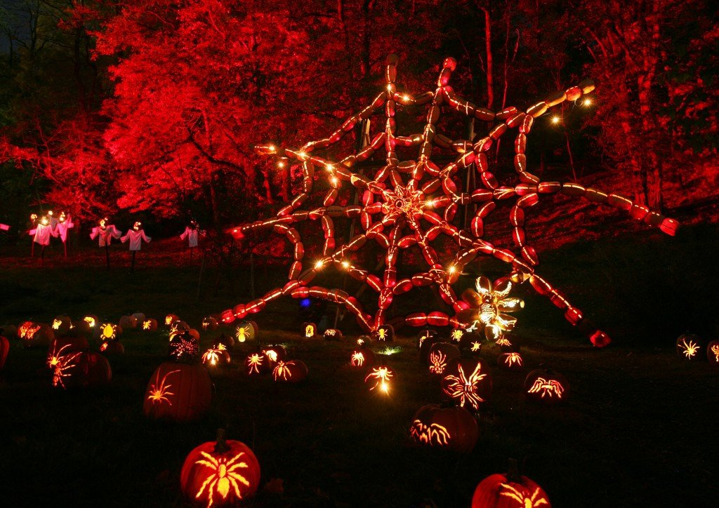Blaze Pumpkin Carving the Great Jack O Lantern Blaze Halloween the Hudson