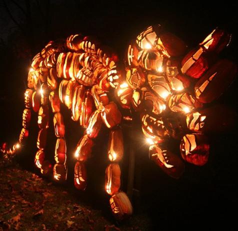 Blaze Pumpkin Carving the Great Jack O Lantern Blaze Returns to Hudson Valley