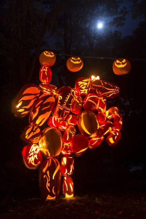 Blaze Pumpkin Carving the Great Jack O Lantern Blaze S Blaze Hudson Valley