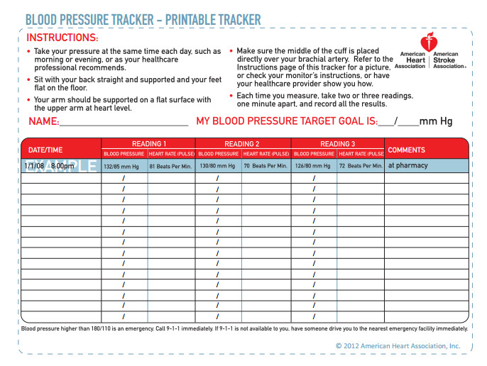 Blood Pressure Tracking Chart Inspired by Savannah February 2014