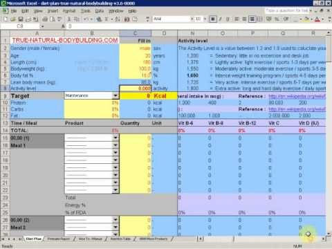 Bodybuilding Meal Planner Template How to Make A T Plan with Excel Demo Video Part 1