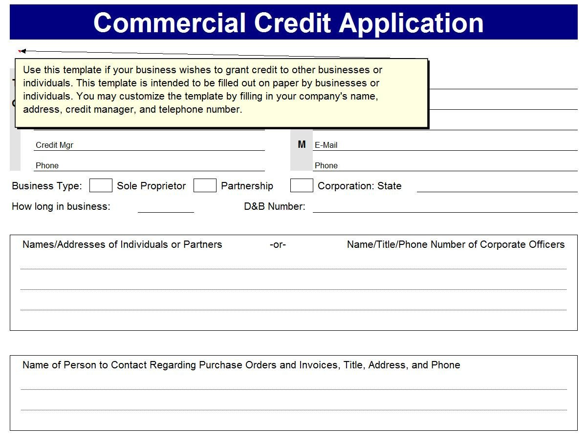 Business Credit Application Template Business Excel Templates