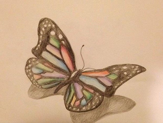 Butterfly Drawings In Pencil 20 butterfly Drawings Art Ideas