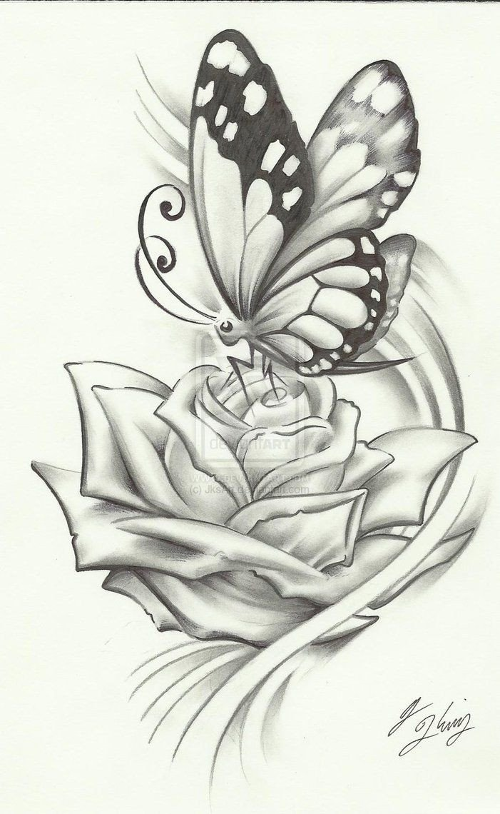 Butterfly Drawings In Pencil 25 Best Ideas About butterfly Drawing On Pinterest