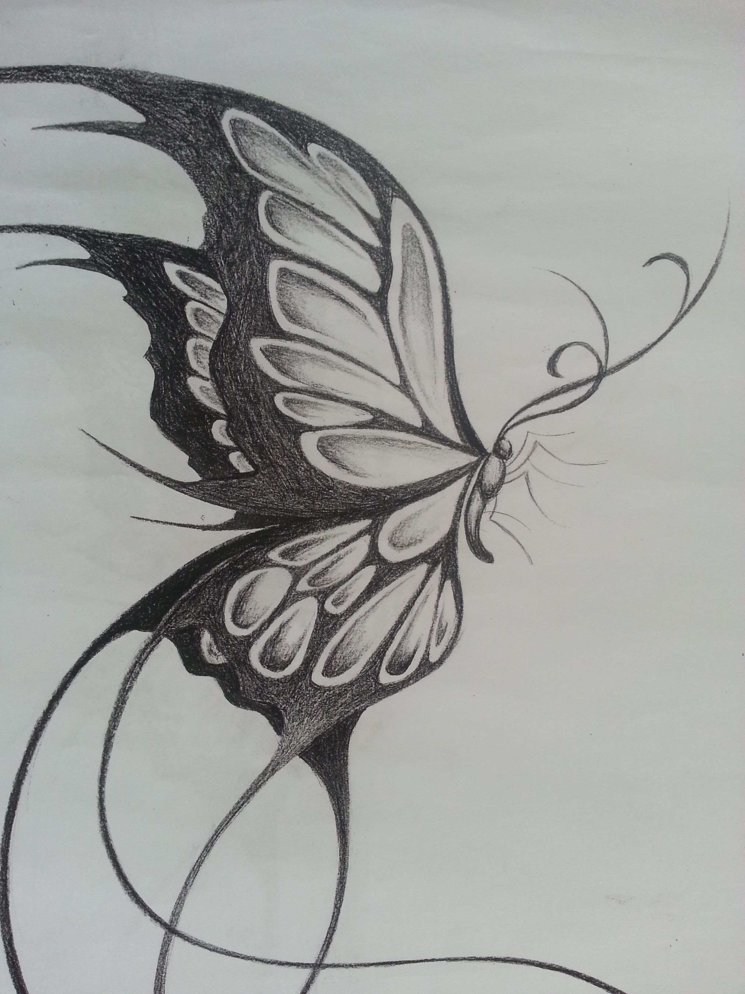 Butterfly Drawings In Pencil original Design Of A Large butterfly