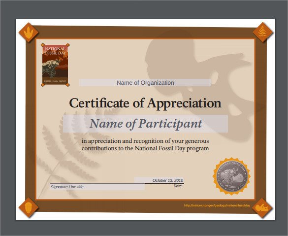 Certificate Of Appreciation Template Sample Certificate Of Appreciation Templates 35