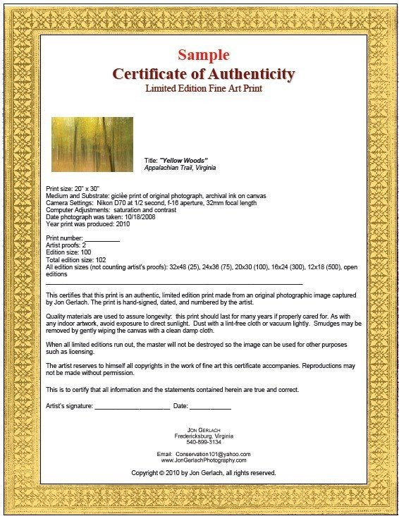 Certificate Of Authenticity Template 7 Free Sample Authenticity Certificate Templates