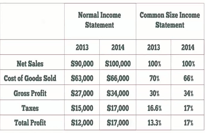Common Size Income Statement Template Mon Size In E Statement Video