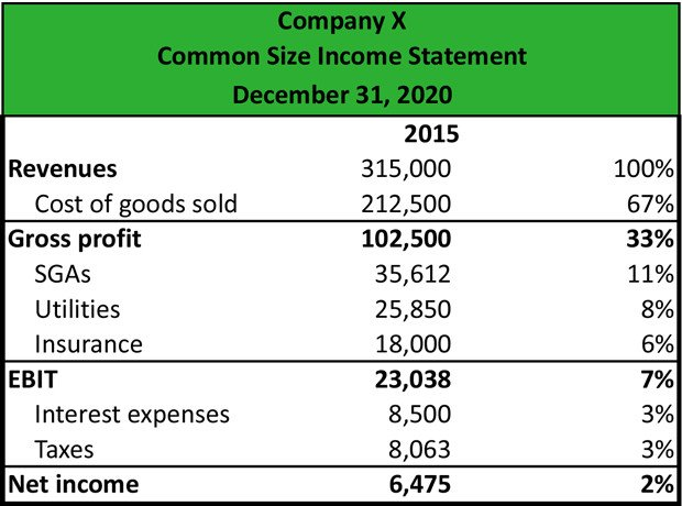 Common Size Income Statement Template What is A Mon Size In E Statement Definition