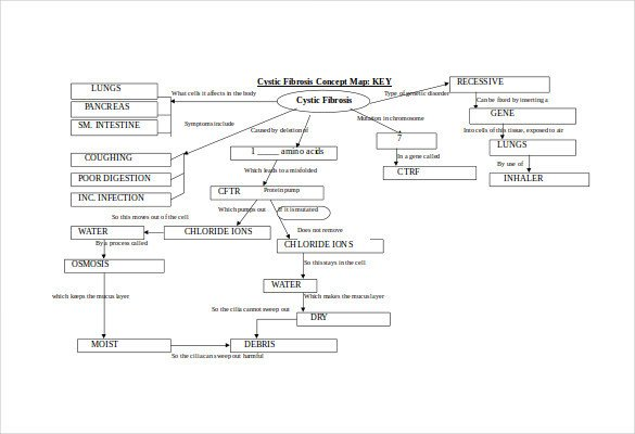 Concept Map Template Word Concept Map Template 10 Download Free Documents In Pdf