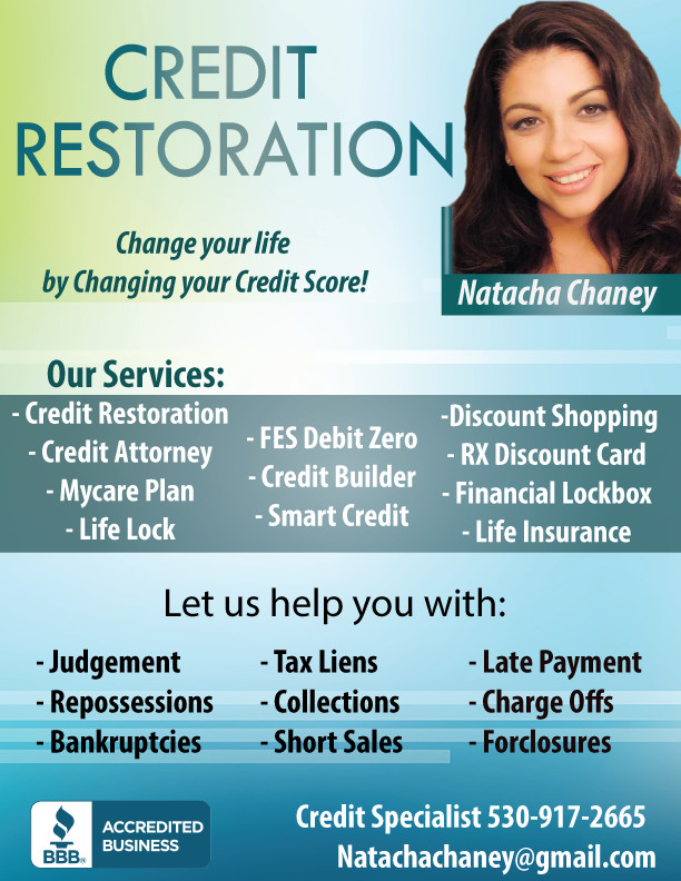 Credit Repair Flyer Template Business Flyers Thunderfish Media