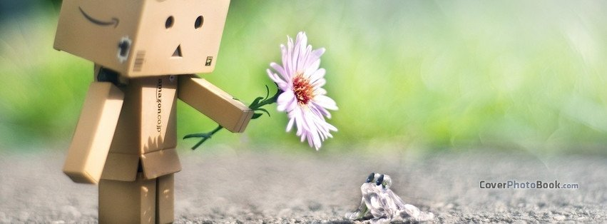 Cutest Fb Cover Photos Cute Danbo and Frog Friendship Cover Creative