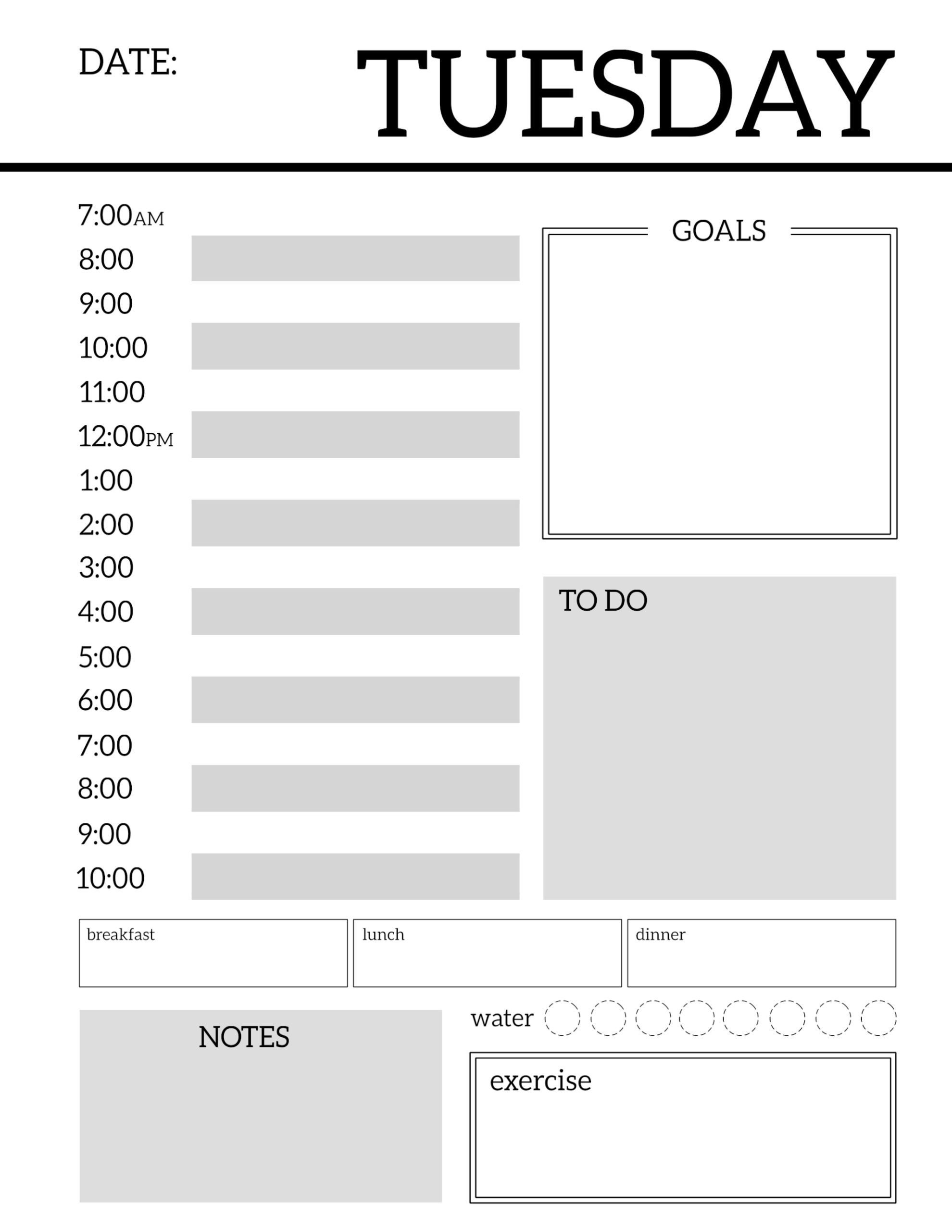 Daily Schedule Template Printable Daily Planner Printable Template Sheets Paper Trail Design
