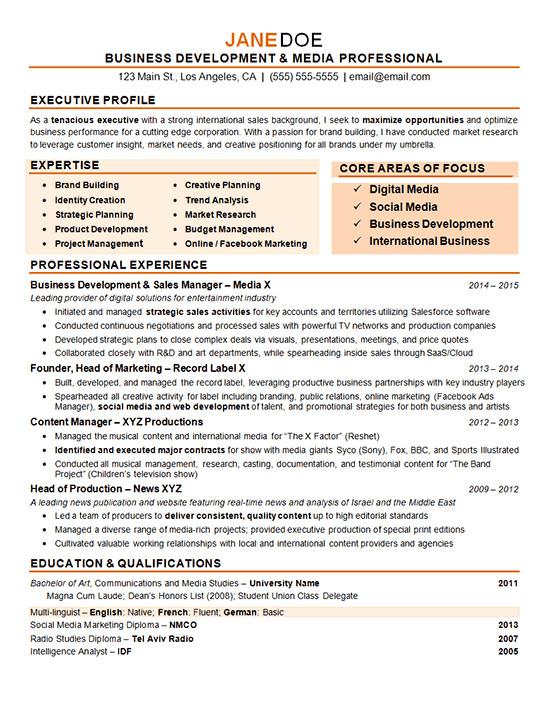 Digital Marketing Resume Sample Digital Marketing Resume Example