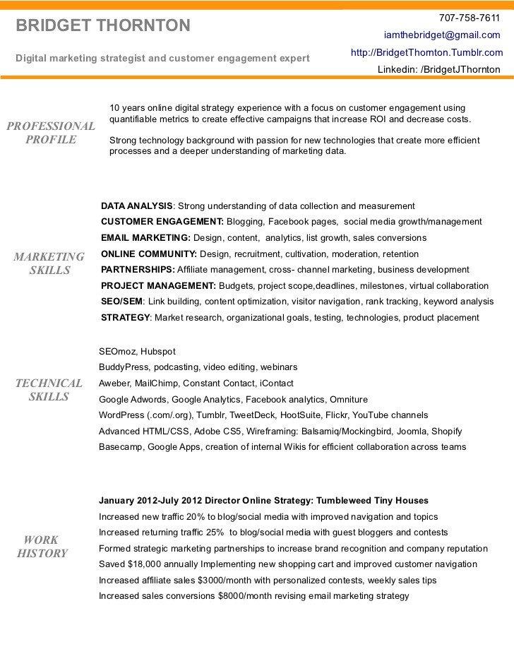 Digital Marketing Resume Sample Digital Marketing Resume Of Brid Thornton