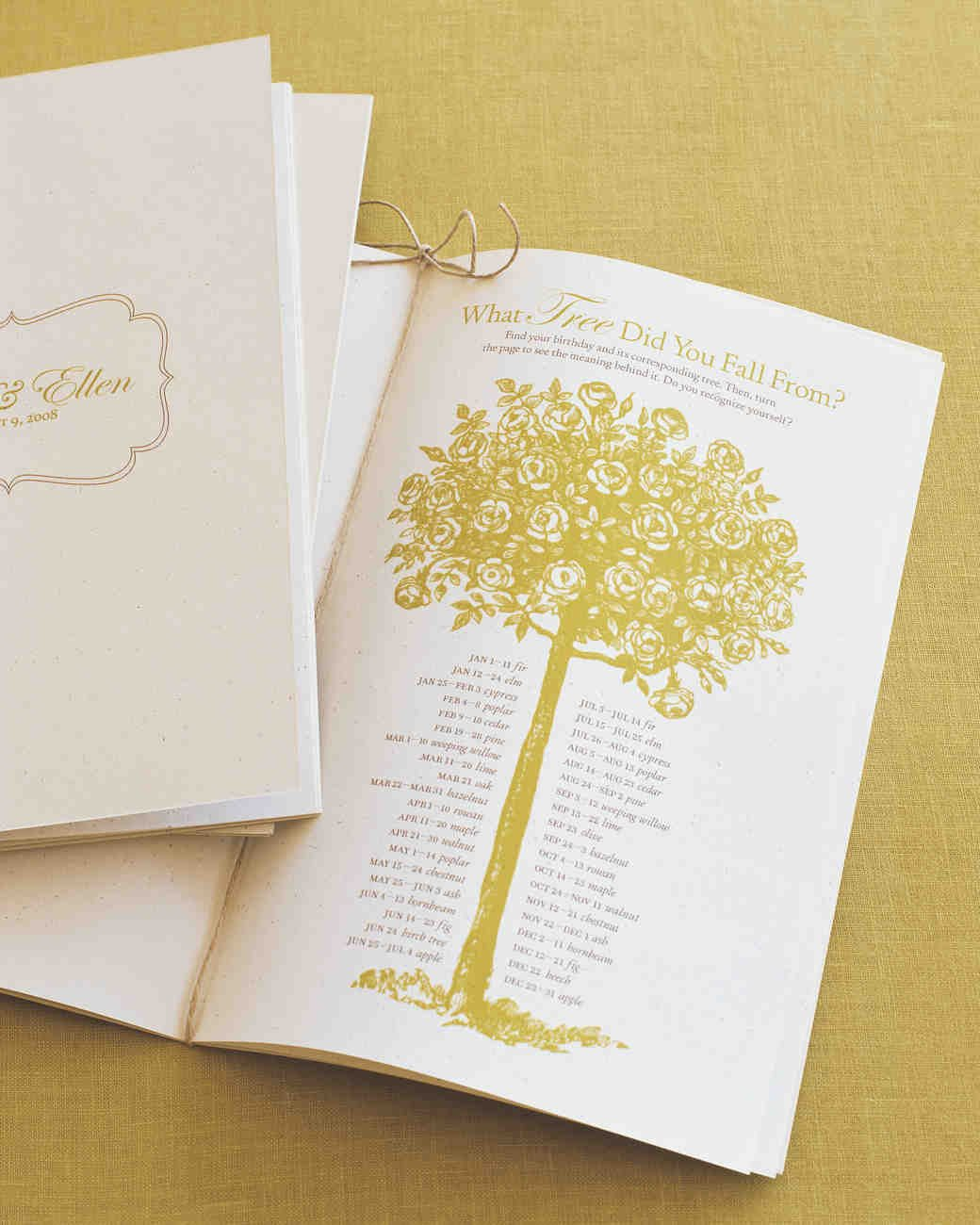 Diy Wedding Program Template 25 Ways to Upgrade Your Diy Wedding Programs