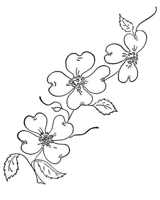 Dogwood Flower Outline 23 Of Dogwood Flower Outline Template