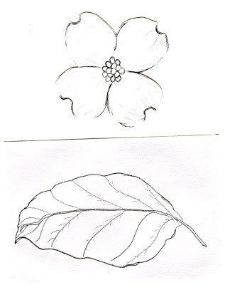 Dogwood Flower Outline Diane S Blog Dogwood Tree Watercolor